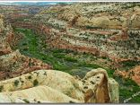 13 Calf Creek Canyon